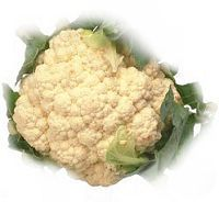 cauli all year round