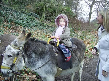 Libbie at Donkey Sanctuary